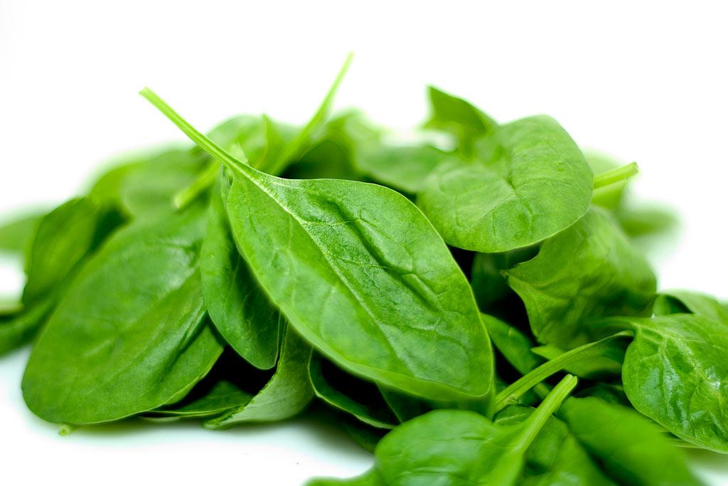 Špenát-recepty Koriander siaty sa oplatí jesť! Liečivé účinky koriandra ho predurčujú na použitie v kuchyni
