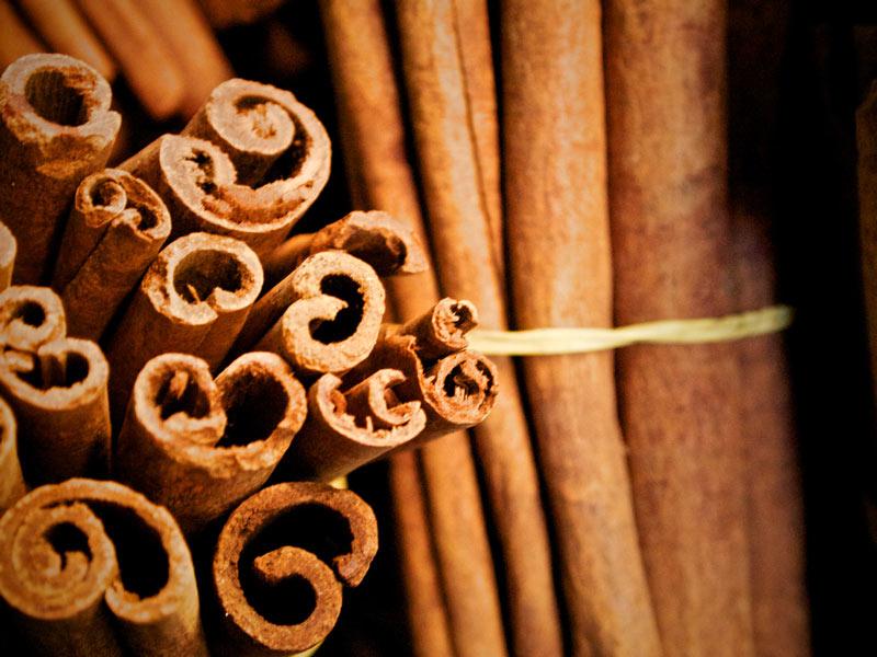 korica-liečivé-účinky 10 dôvodov prečo jesť orechy na Vianoce. Účinky orechov na zdravie