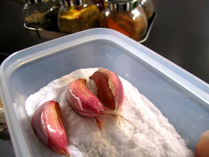 Cesnak v soli